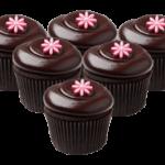 wsi-imageoptim-CupcakesTransparent.png